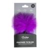 Easytoys Small Tickler - Purple